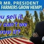 Obama-hemp