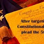 Constitution-Flag