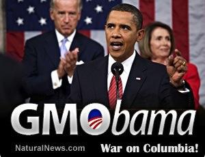 GMOBama