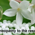 Homeopathy globules with herbal flower
