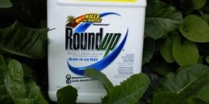 Roundup-e1357192553864-644x322