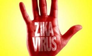 zikavirus-1-700x428