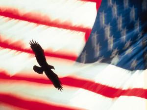 eagle_flag_1024x768