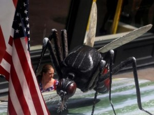 A woman walks past a giant fake mosquito placed on top of a bus shelter as part of an awareness campaign about the virus in Chicago A woman walks past a giant fake mosquito placed on top of a bus shelter as part of an awareness campaign about the Zika virus in Chicago, Illinois, United States, May 16, 2016. REUTERS/Jim Young