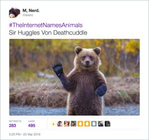 animal-death-hug