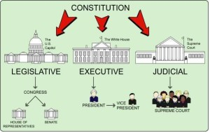 constitution and congress chart