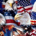 patriotic wallpaper eagles