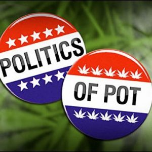 politics and pots