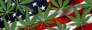 pot and american flag