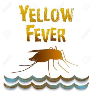 30219548-Yellow-Fever-mosquito-standing-water-graphic-illustration-isolated-on-white-background--Stock-Vector